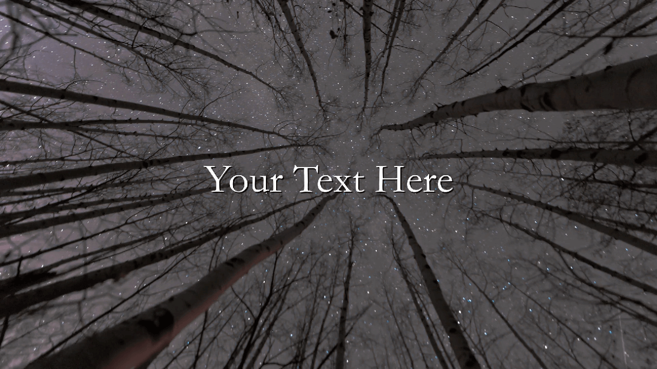 Customize the text for Forest Stars Logo to view your free intro movie.