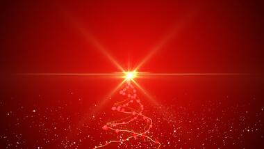 Christmas Tree - Logo