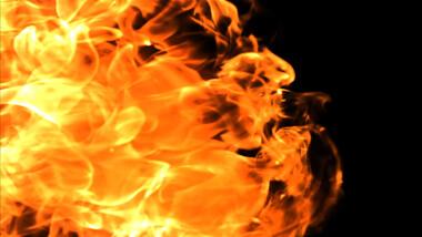 Flame Reveal Logo